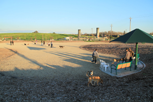The Sutter's Landing dog park is relatively new to the area and located at the intersection of 28th and B streets. (Photo by Robert Ossa)
