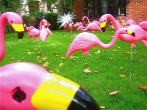 "Getting ""flamingoed"" is the idea behind a Sacramento-based company that runs on the Internet at www.getflamingoed.com. (Photo courtesy of Stephanie Allen and Stuart Campbell)"