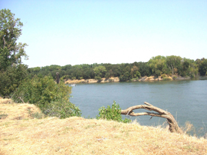 The future California Indian Heritage Center will be located on a 43-acre site, along the Sacramento River in West Sacramento. (Photo courtesy of the California State Indian Museum)