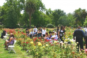 East Sacramento's McKinley Park Rose Garden draws many daily visitors, as well as visitors for special events, weddings in particular. / Valley Community Newspapers photo by Lance Armstrong