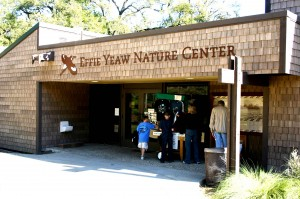 The Effie Yeaw Nature Center is located at 2850 San Lorenzo Way in Carmichael's Ancil Hoffman Park./ Valley Community Newspapers photo, Lance Armstrong