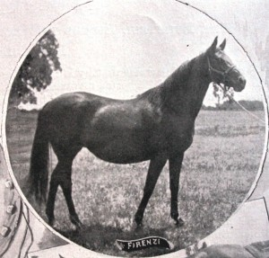 "Firenzi was a multiple national champion who won 47 races and was known as the ""Queen of the Turf."" / Photo public domain"