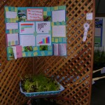 David Lubin Elementary School won third place for their garden in a wheelbarrow exhibit.