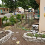 "The garden at Theodore Judah Elementary School is a place where students can engage in ""hands-on"" learning. / Valley Community Newspapers photo, Ellen Cochrane"