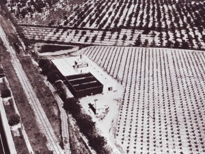 This aerial photograph shows the Silva Bros. Winery in about 1925. / Photo courtesy, PHCS