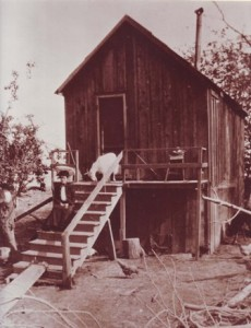 THE TONY SEAMAS HOME on the Grangers Dairy property of his brother Manuel Seamas is shown in about the early 1900s. The identity of the woman in the photograph is unknown. / Photo courtesy, Portuguese Historical and Cultural Society