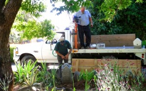 CAREFULLY RELOCATED. The Asch family tombstone was removed from a residential property in Auburn in June 2011. / Photo courtesy, Susie O'Brien