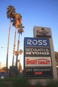 Photo #3 Caption: Palms line Macy's parking lot along El Camino Avenue. Photo by Lance Armstrong