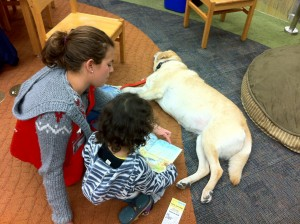 "A Lend A Heart volunteer and therapy dog work with a young reader at the ""Read to a Dog"" program at Belle Cooledge Library. // Photo courtesy of Maryann Farmar/Lend A Heart."