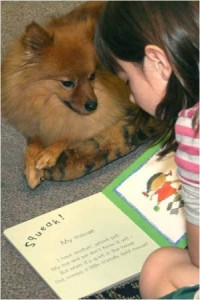 Eddy – therapy dog of Lend A Heart President Barbara Street – listens while a young reader practices their reading.