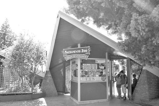 This unique-looking, early 1960s structure is located at the entrance of the Sacramento Zoo. Photo by Lance Armstrong
