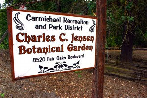 The 3.5-acre Charles C. Jensen Botanical Garden at 8520 Fair Oaks Blvd. is open daily from 8 a.m. to dusk. Photo by Lance Armstrong