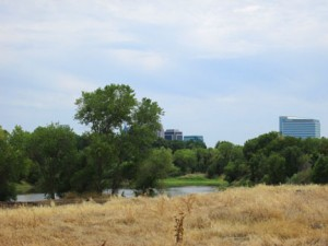 The future California Indian Heritage Center will be located on this property, along the Sacramento River in West Sacramento. Photo courtesy of California State Parks
