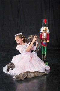 Pocket resident, 10-year-old Nikole Farina is a rising star in the local ballet world. Nikole will be playing Clara, the opening weekend of Ron Cunningham's The Nutcracker Mutt with the Sacramento Ballet. Here she is shown with adorable puppies from Front Street. Photo by Robin Hagy and Mark Coverdale