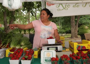Photos by Stephen Crowley Shown here is a photo from last year's East Sacramento Farmers' Market. The weekly market supports local vendors as well as vendors hailing from as far south as Salinas. The East Sacramento Farmers' Market is a year-round Saturday morning market at 35th Street and Park Way in McKinley Park. Market hours are 8 a.m. to 1 p.m. From pralines to flowers and produce, the farmers' market exemplifies some of the best around from various types of businesses.